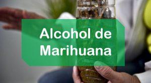 Marihuana Alcohol