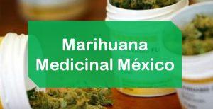 Marihuana Mexico Medicinal